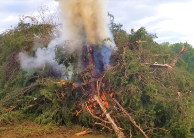 Land Clearing: fire