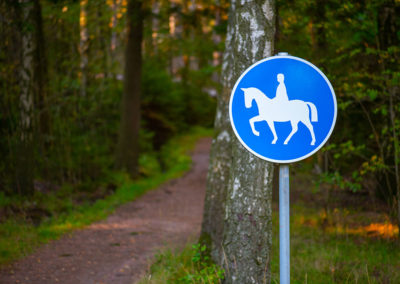 Riding Arena: horse trail sign